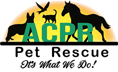 Adams County Pet Rescue
